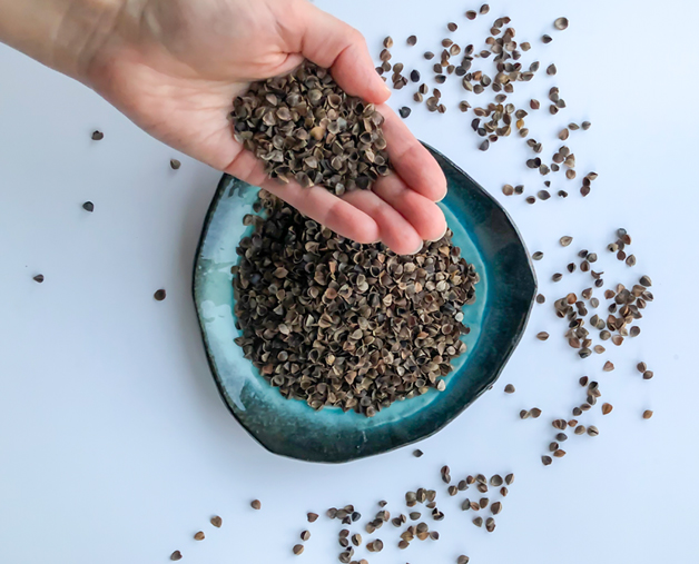 Buckwheat Hulls Benefits, Minthoshi